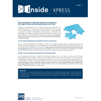 Das Unternehmen im Griff dank internen Kontrollsystems: Vier-Augen-Prinzip und Funktionstrennung in der Praxis